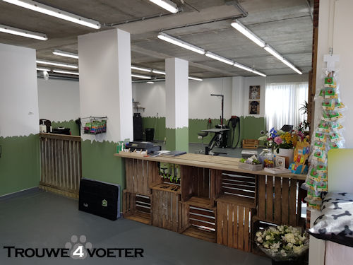 Nieuwe Salon Trouwe4voeter